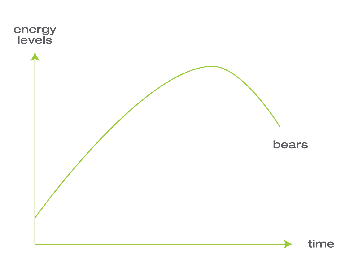 energy levels bears