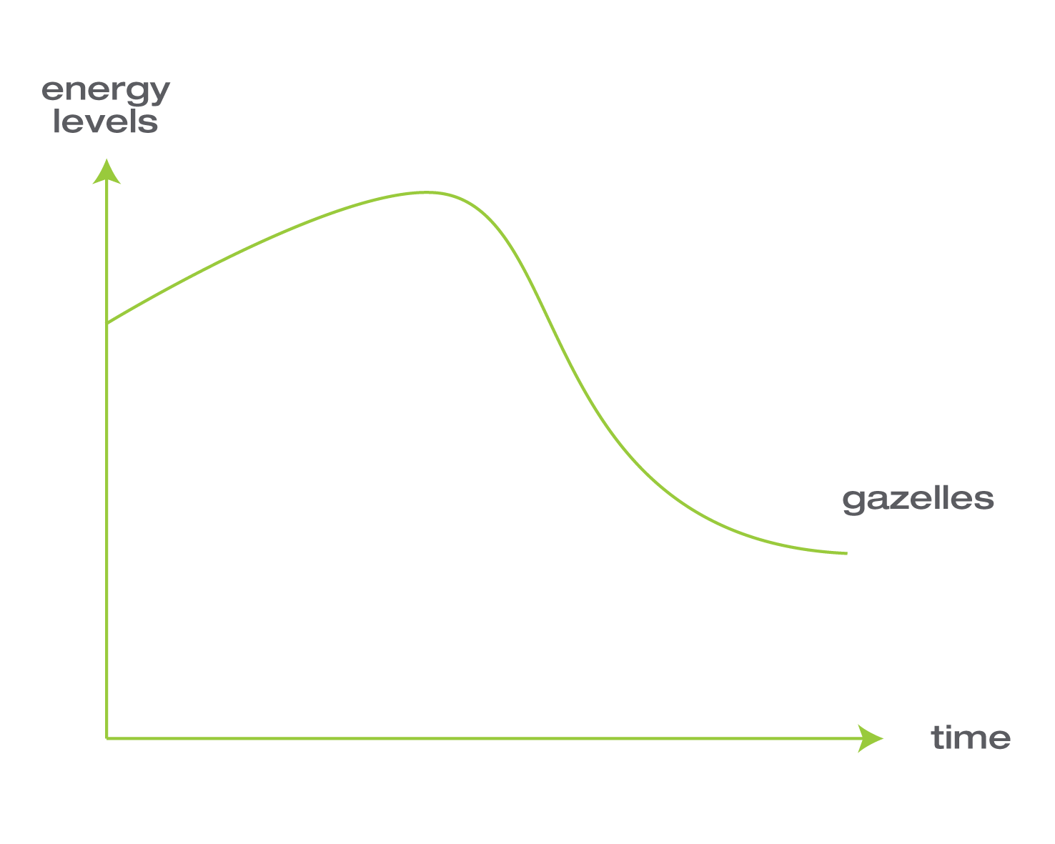 energy levels gazelles