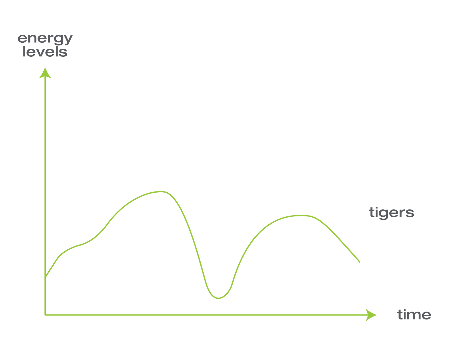 energy levels tigers
